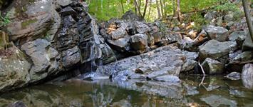 Kugler Woods Preserve, Kingwood Township, NJ