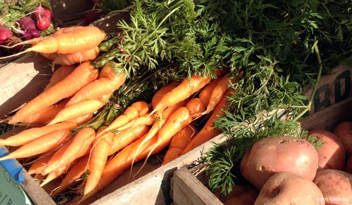 HLT farmers market